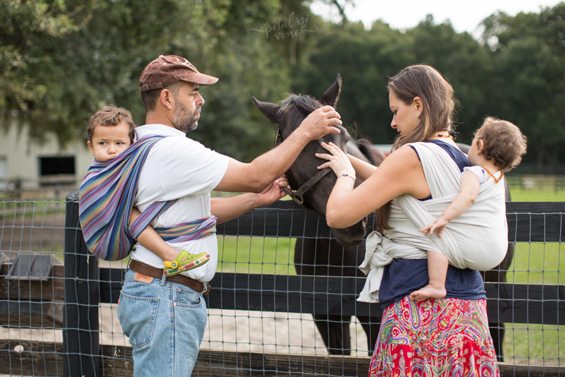 Parents wrap toddlers on horse farm